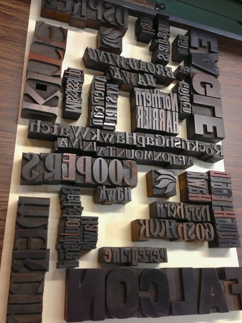 Beginning to assemble the names of 14 raptor species, in various typefaces and sizes of vintage wood type. Quite the challenging puzzle!
